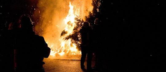 Bild: Meterhohe Hecke brannte in der Silvesternacht
