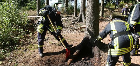 Bild: Baumwurzel brannte im Habacher Wald - Waldbrand konnte verhindert werden
