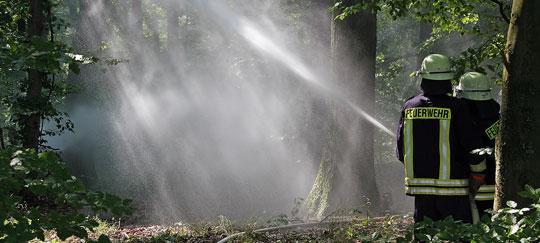 Bild: Erfolgreiche Waldbrandübung auf dem Hellberg